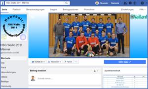HSG WaBo2011 Handball Männer